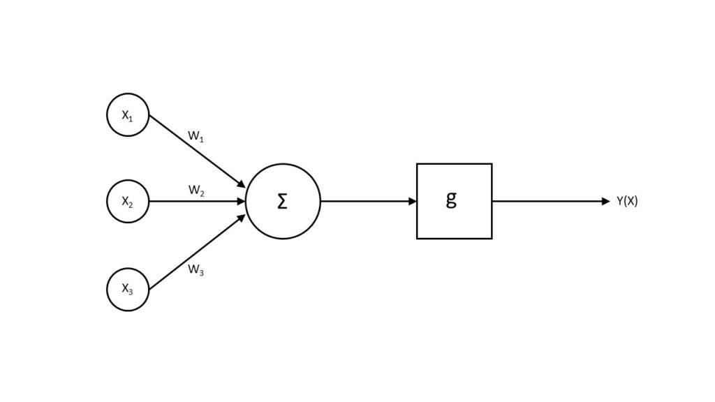 Figure 2. Neuron scheme